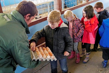 Handling eggs at Whirlow Hall Farm