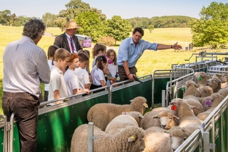 RACA And FACE Team Up To Offer Chef On The Farm Sessions %7C School Travel Inspiration